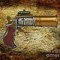 Steampunk - Gun - The Ladies Gun by Paul Ward