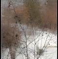 Steamy Window by Tim Nyberg