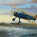 Stearman Biplane by Stuart Swartz