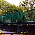 Steel Bridge by Tom Gari Gallery-Three-Photography