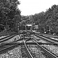 Steel Rail Intersections.   Point Of Rocks Md by Thomas Marchessault