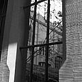 Steel Window by Miguel Winterpacht