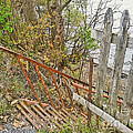 Steep Steps To Beach - Finger Lakes by CR Leyland