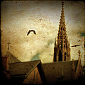 Steeple Crows by Gothicrow Images