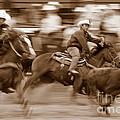 Steer Roping by Bill Keiran