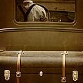 Steerage by Margie Hurwich