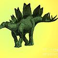 Stegosaurus by Spencer Sutton