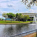 Steinbrenner Field Lake 2 by C H Apperson