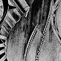Steinway Black And White Inners by Georgianne Giese