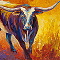 Stepping Out - Longhorn by Marion Rose