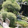 Stepping Stones And Water Fall by Minnie Davis