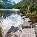 Stepping Stones by Kristopher Schoenleber