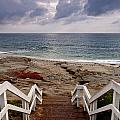 Steps And Pelicans by Peter Tellone