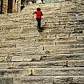 Steps by Christopher Rees
