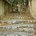 Steps In Cavaillon by Oleg Koryagin