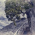 Steps To Beauty On Moro Rock by Angela Stanton