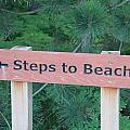 Steps To The Beach by Dan Sproul