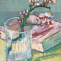 Still Life    A Flowering Almond Branch by Vincent Van Gogh