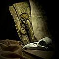 Still Life With A Bird Skull by Jaroslaw Blaminsky