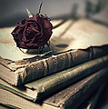 Still Life With Books And Dry Red Rose by Jaroslaw Blaminsky