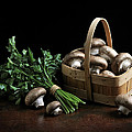Still Life With Mushrooms by Krasimir Tolev
