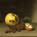 Still Life With Cake  by Raphaelle Peale