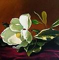 Still Life With White Flower by Daniel Arago