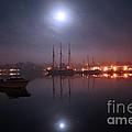 Still Of The Night by Joe Geraci