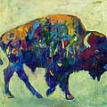 Still Wild by Kate Dardine