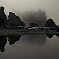 Stillness At Ruby Beach by Robert Woodward