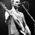 Sting-gp29 by Timothy Bischoff