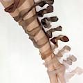 Stockings On A Model's Legs by Erwin Blumenfeld