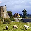 Stokesay Castle by John Chatterley