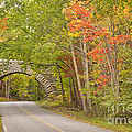 Stone Arch Bridge In Acadia National Park by Ken Brown
