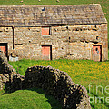 Stone Barn With Red Doors In Swaledale Yorkshire Dales by Louise Heusinkveld
