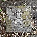Stone Bee In Jim Thorpe Pa by Anna Ruzsan