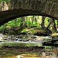 Stone Bridge II by Elizabeth Dow