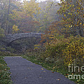 Stone Bridge In Autumn 3 by Michele Steffey