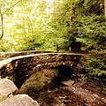 Stone Bridge  by Trina  Ansel