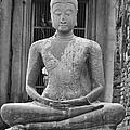 Stone Buddha by Adam Romanowicz