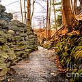 Stone Cold Walkway by Jim Lepard