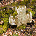 Stone Cross In The Forest by Matthias Hauser