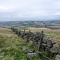 Old Dry Stacked Stone Fence Of Scotland by Diane Palmer