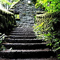 Stone House Stairs by Lizbeth Bostrom