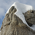 Stone Lion Covered With Snow by Matthias Hauser