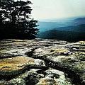 Stone Mountain by Samantha Boyce