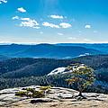 Stone Mountain Summit View by Randy Scherkenbach