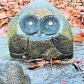 Stone Owl by James Potts