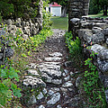 Stone Pathway by David T Wilkinson