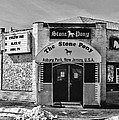 Stone Pony In Black And White by Paul Ward